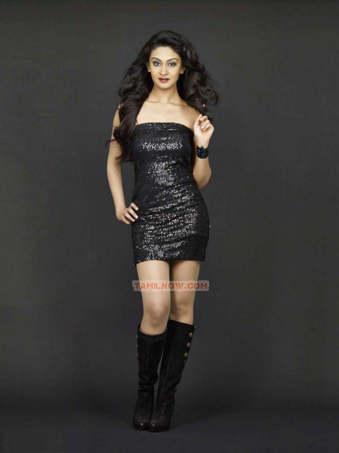 Actress Aishwarya Arjun 1057