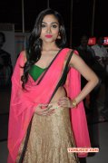 Aishwarya Devan Actress Feb 2015 Photo 4882