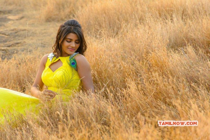 Latest Album Aishwarya Rajesh Cinema Actress 8420