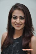 Aksha Actress Photo 8237
