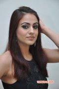 Cinema Actress Aksha Recent Wallpapers 5015
