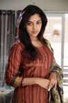 Actress Amala Paul 1806