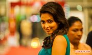 Actress Amala Paul 429