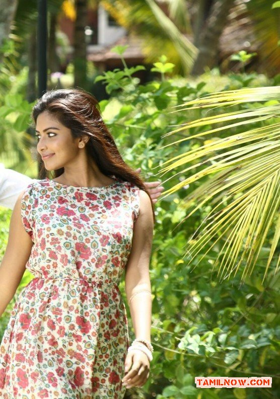 Actress Amala Paul 6670