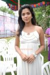 Actress Amala Paul Photos 1629