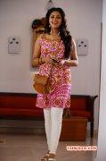 Actress Amala Paul Recent Stills 6017