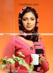 Actress Amala Paul2