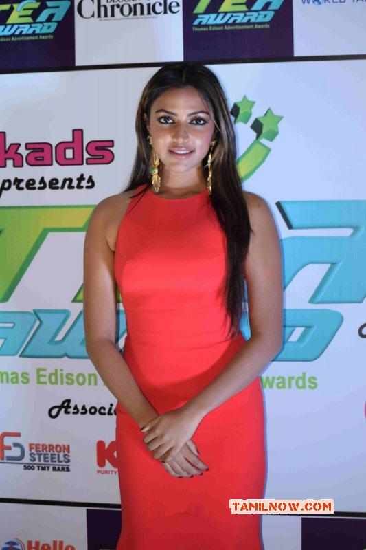 Amala Paul Heroine Recent Gallery 4374
