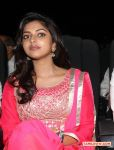 Amala Paul Photos 2410