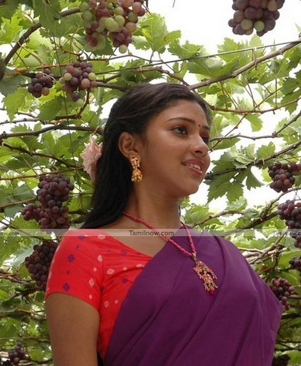 Amala Paul Picture 7