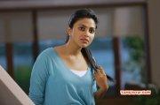 Sep 2016 Wallpaper Indian Actress Amala Paul 8929