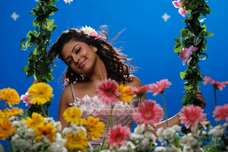 Tamil Actress Amala Paul 3385