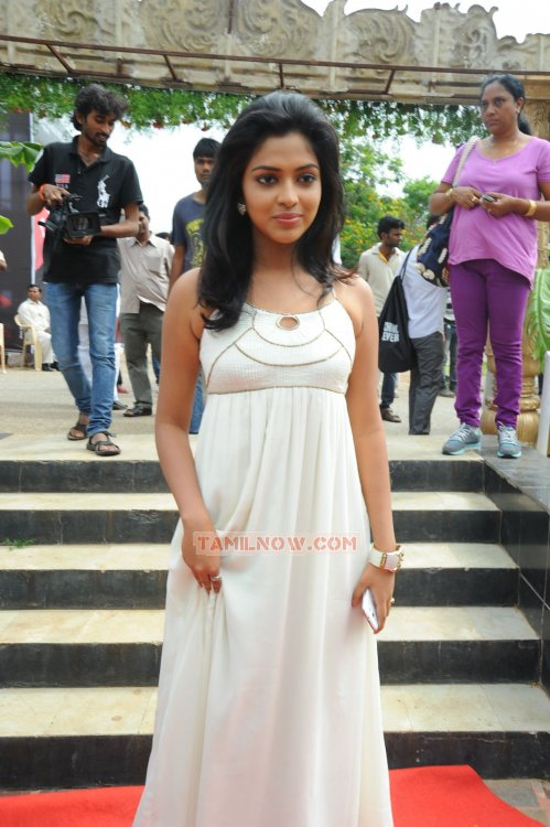 Tamil Actress Amala Paul 3832