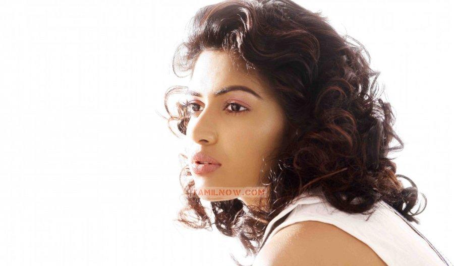 Tamil Actress Amala Paul 4583