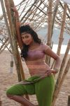 Tamil Actress Amala Paul Photos 5511