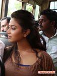Tamil Actress Amala Paul Stills 718