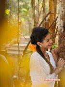 Amyra Dastur Cinema Actress Recent Wallpaper 6943