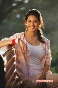 Amyra Dastur Movie Actress New Galleries 916