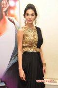 Cinema Actress Amyra Dastur New Gallery 6111