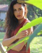 South Actress Amyra Dastur New Album 5524