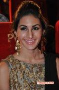 Tamil Movie Actress Amyra Dastur New Photo 5725
