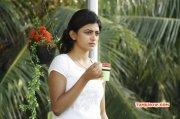 Anandhi Tamil Actress Pic 871