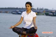 Recent Gallery Cinema Actress Anandhi 6901