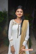 Sep 2016 Galleries Movie Actress Anandhi 8823