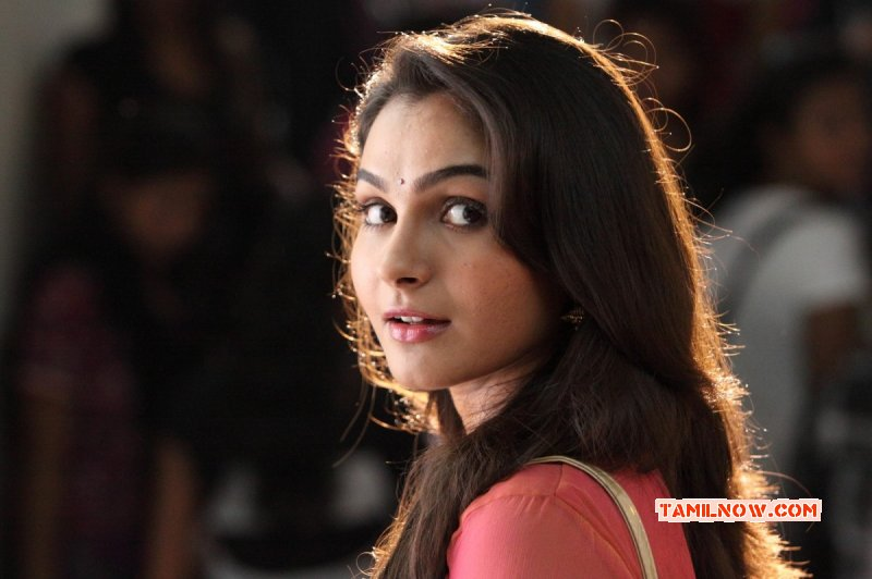 Andrea Jeremiah Cinema Actress New Albums 5672
