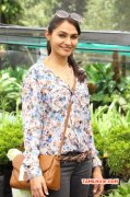 Recent Picture Andrea Jeremiah Tamil Heroine 2651
