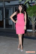 Tamil Actress Andrea Jeremiah 3978