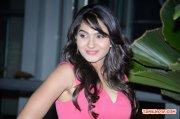 Tamil Actress Andrea Jeremiah Photos 1038