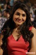 Tamil Actress Andrea Jeremiah Photos 2318