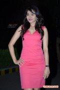 Tamil Actress Andrea Jeremiah Photos 931