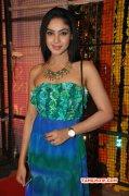 New Photo Angana Roy Tamil Actress 9506
