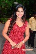 2015 Pic Heroine Anjali 4898