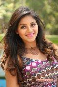 2015 Pics Anjali Actress 3012