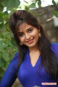 Actress Anjali 7057