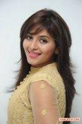 Actress Anjali Stills 4174