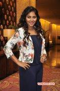 Actress Image Anjali Latest 544