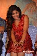Latest Album Tamil Movie Actress Anjali 5328