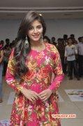Latest Gallery Anjali Indian Actress 7263