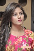 Latest Pictures South Actress Anjali 1811