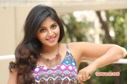 New Galleries Anjali South Actress 847