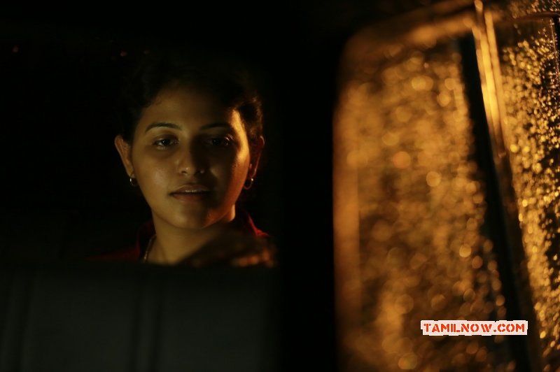 New Pictures Tamil Actress Anjali 1673