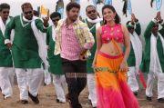 Tamil Actress Anjali 150