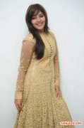 Tamil Actress Anjali 379