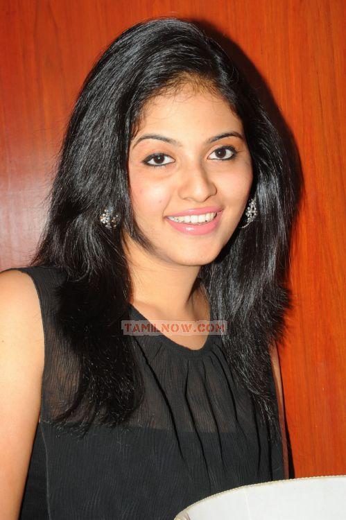 Tamil Actress Anjali 3859