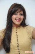 Tamil Actress Anjali 842