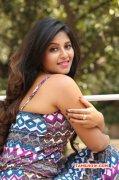 Tamil Actress Anjali New Image 9794